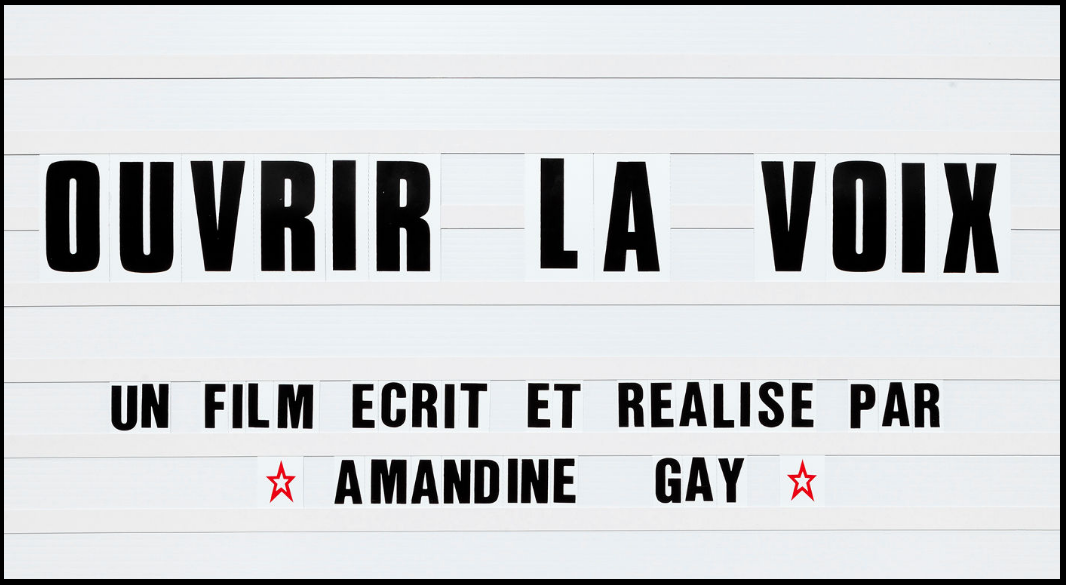 amandine-gay
